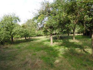Maison d'habitation avec terrain planté d'arbres fruitiers & dépendances