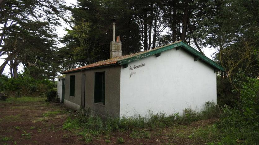 maison en vente judiciaire de type bourrine